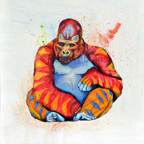 Rainbow Gorilla 1