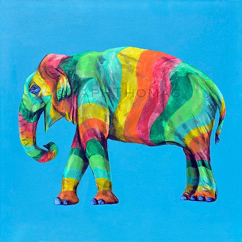 Rainbow Elephant 17