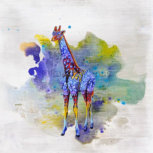 Rainbow Giraffe 3