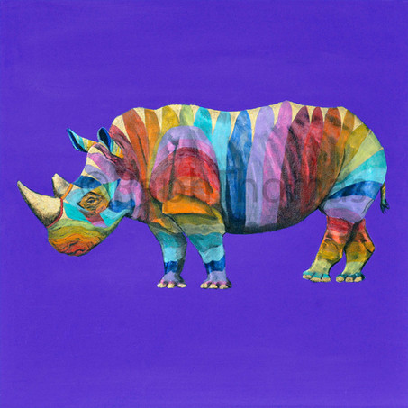 Rainbow Rhinos 5