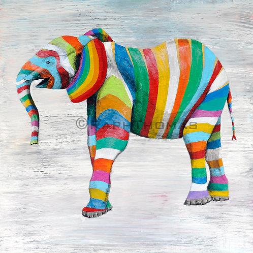 Rainbow Baby Elephant