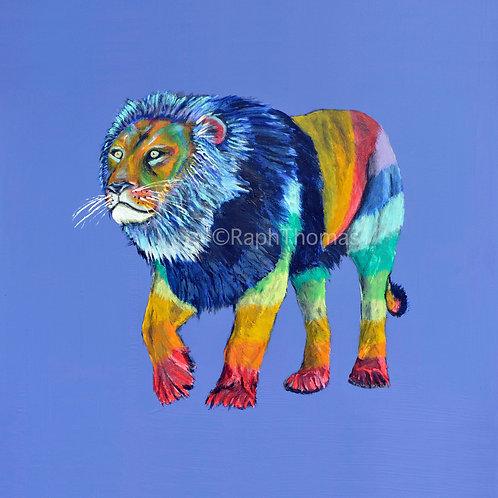 Rainbow Lion 1