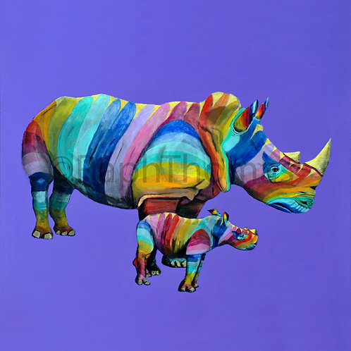 Rainbow Rhinos 6