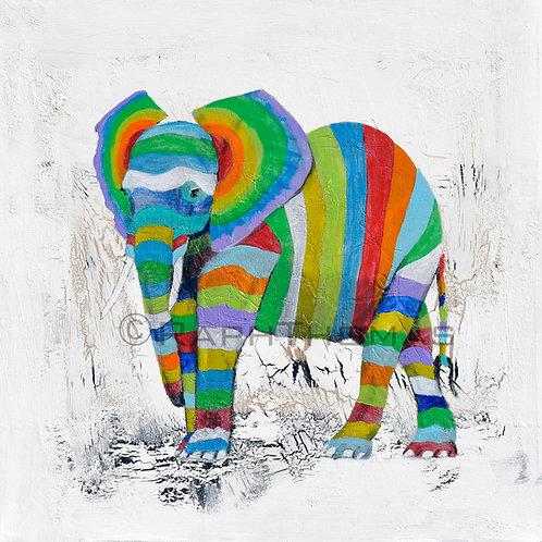 Striped Elephant 3