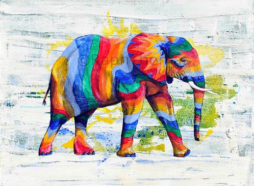 Rainbow Elephant 16