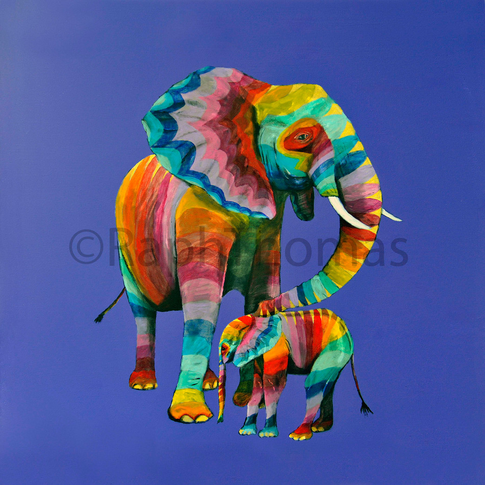 Rainbow Elephants X