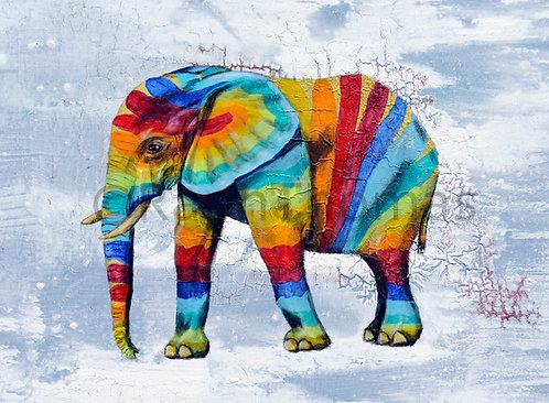 Rainbow Elephant 14