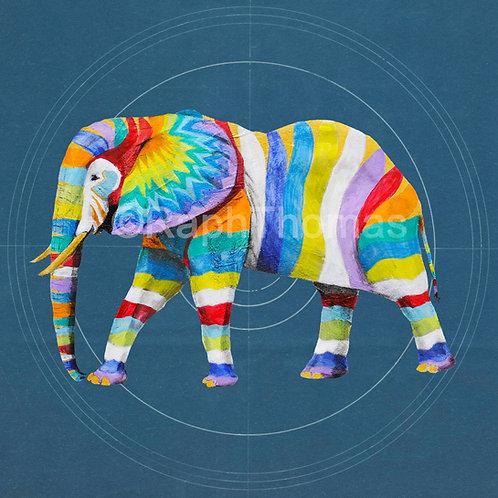 Rainbow Elephant 2 (Adult) on Blueprint