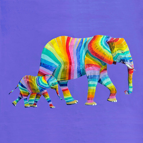 Rainbow Elephants 1