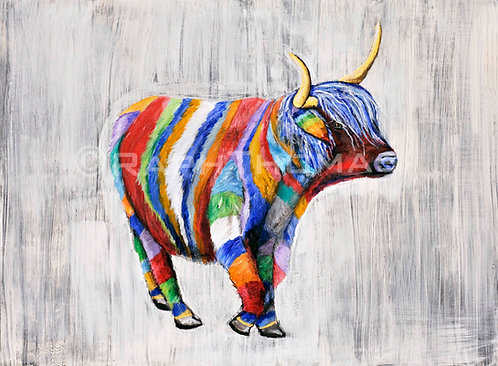 Rainbow Highland Cow 1