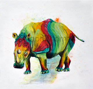 Rainbow Rhino 9