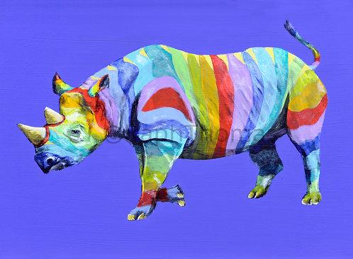 Rainbow Rhino 3