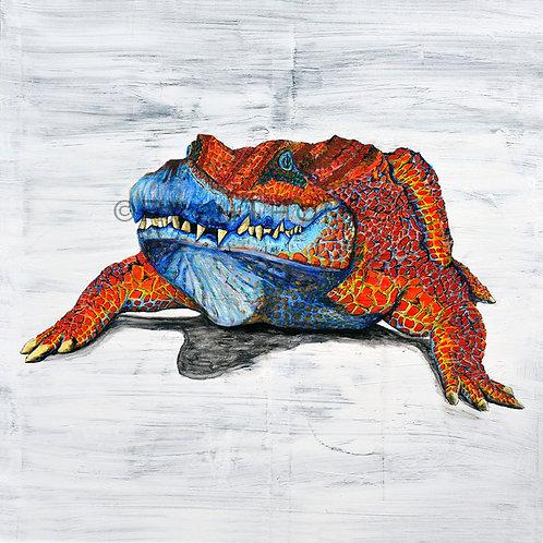 Rainbow Crocodile 1