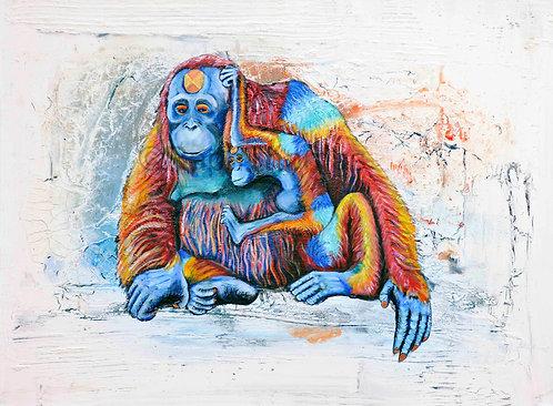 Rainbow Orangutans 1