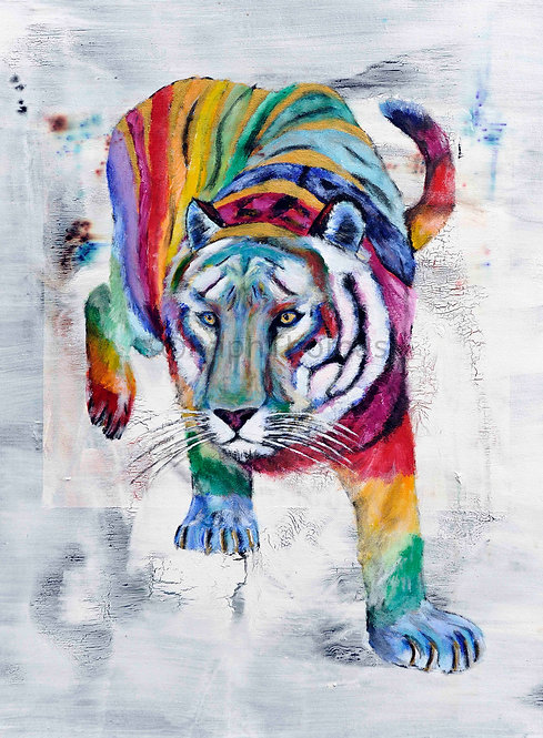 Raibow Tiger 1