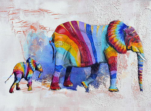Rainbow Elephants 5