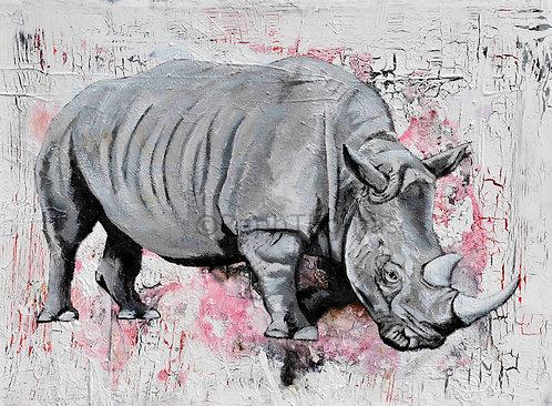 Rhino 4 Grey