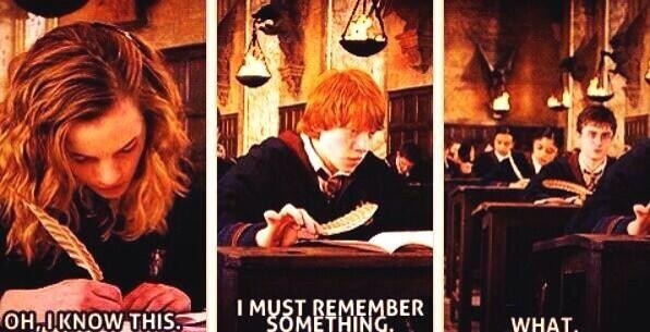 Hermione, Ron, and Harry Potter studying