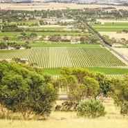 Going Bush: Reasons to Start your Career in Rural Australia