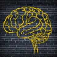 Brain drawing on brick wall