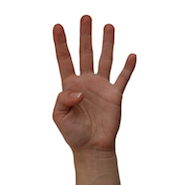 Four fingers being held up