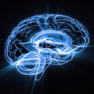 Train your Brain: Memory Tips and Tricks