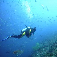I want your job: Interview with Peter Michie, Prosecutor turned Scuba Diving Entrepreneur