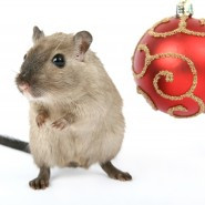 Mouse and Christmas tree decoration