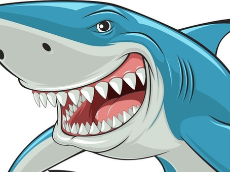 How to Dodge the Wily Writer Shark