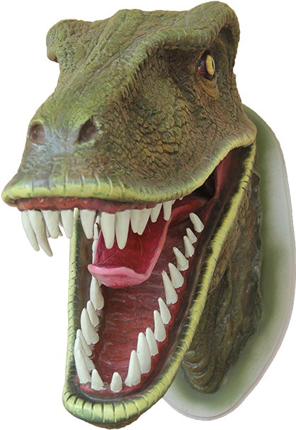 A Model Velociraptor Head
