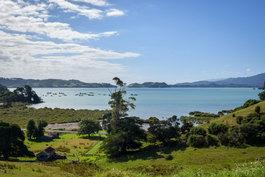 NZ 00007.jpg