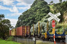 NZ 00024.jpg