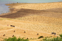 Maroc 00038.jpg