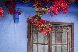 Maroc 00020.jpg