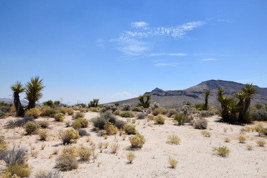 Californie 00032.jpg