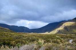 NZ 00034.jpg