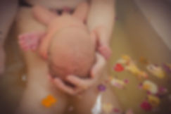 Newborn herbal bath photography