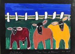 Three Cows In Tahmoor