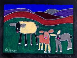 Sheep On The Monaro Plain