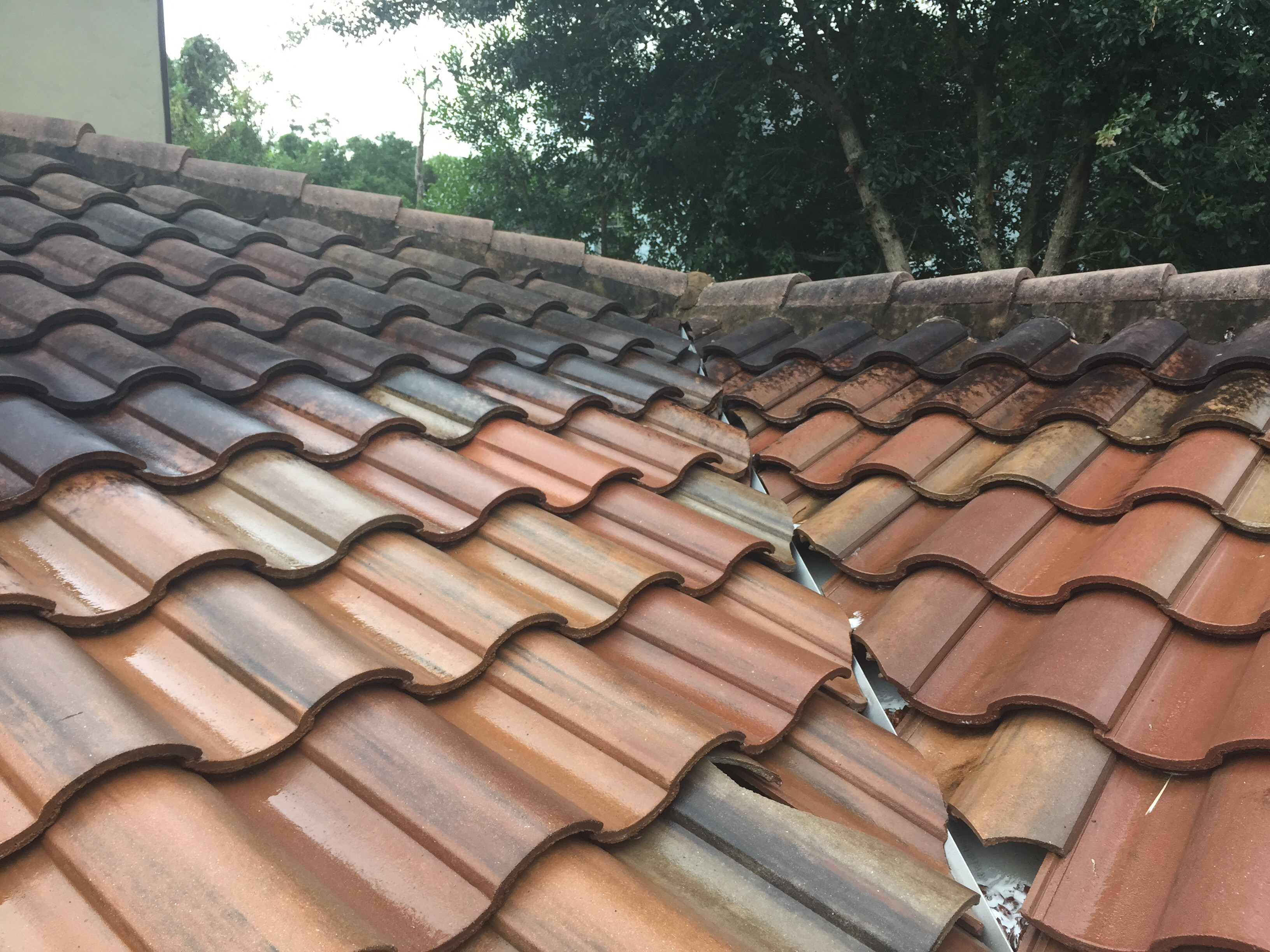 Tile Roof Cleaning Winter Springs