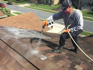 Roof Cleaning in Orlando, FL