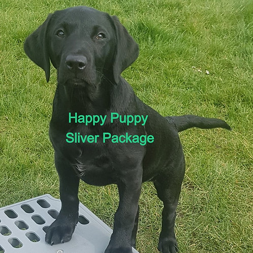 Happy Puppy Silver Package