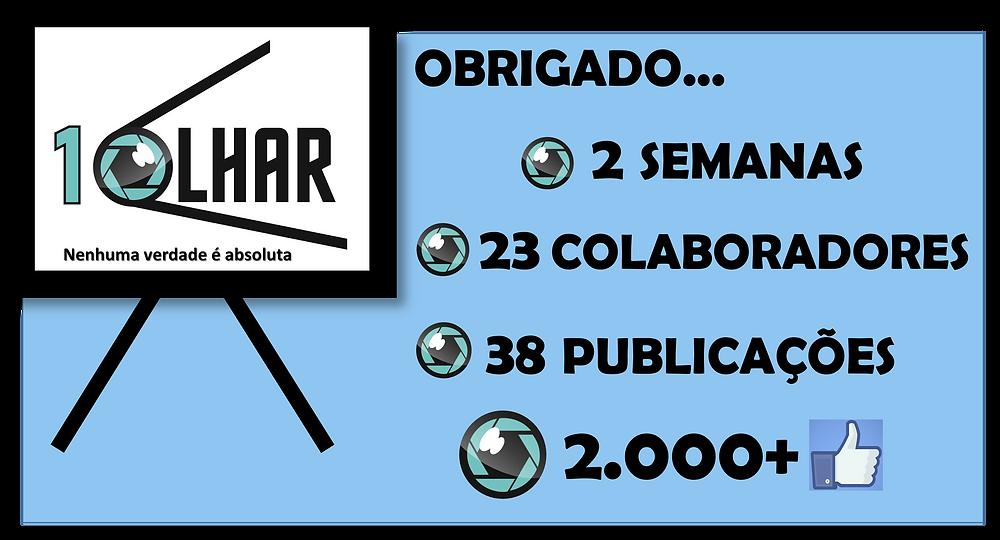2 semanas, 23 colaboradores, 38 publicacoes, 2000 curtidas