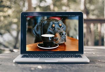 videokonferenz_besterhund.jpg