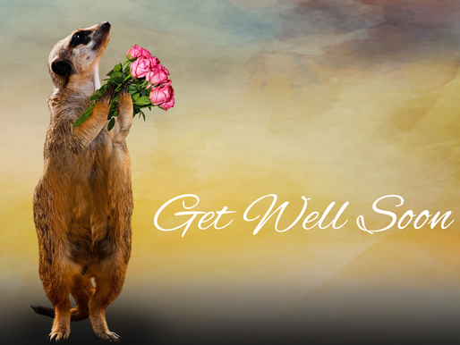 Get well soon – And STAY THE F*@K AT HOME!!!