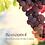 Thumbnail: Phytofuse Renew Resveratrol Night Cream