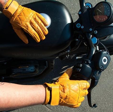 Gloves 22.png