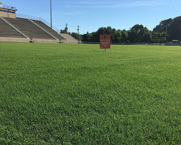 Sports field turf programs