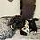 Thumbnail: Fritz - Male | 8-Weeks Old | Maltipoo
