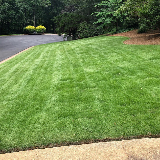 Lawn and Landscape After